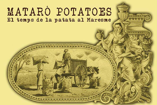 Mataró Potatoes
